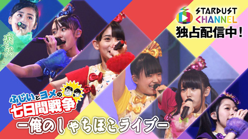 fujii_shachi_banner_v2