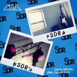 「SDR」